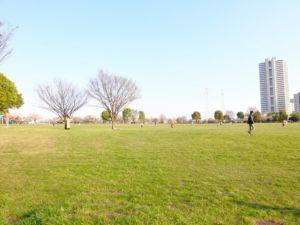 小松川公園